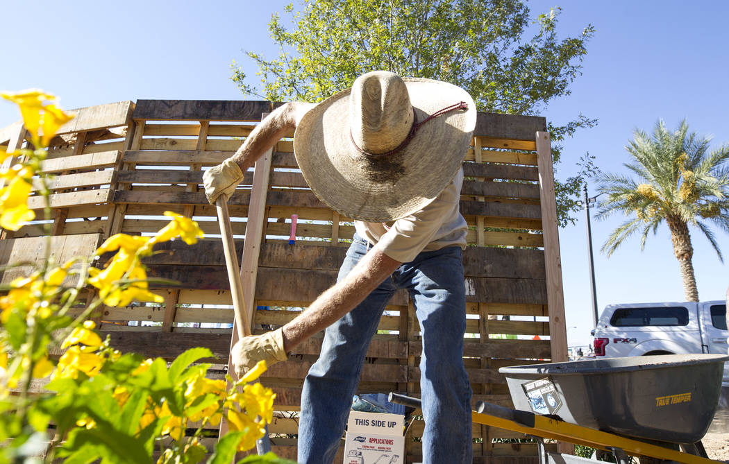 Las Vegas native and construction worker Lyle Hoffman, 58, shovels soil as he volunteers at an under-construction community healing garden located at South Casino Center and East Charleston boulev ...