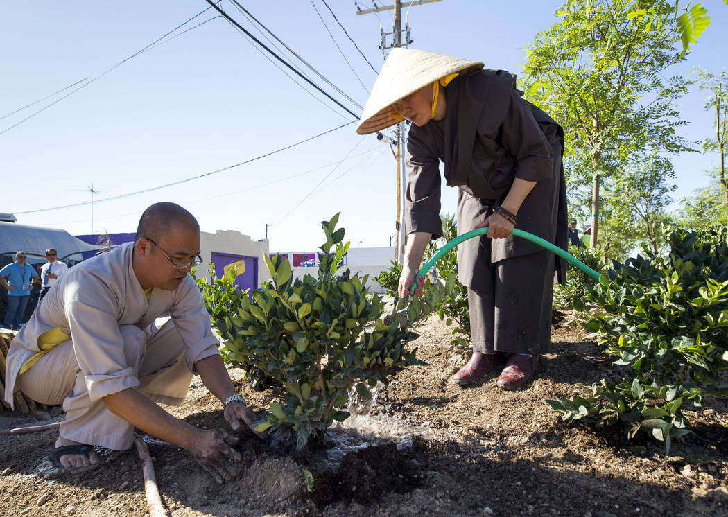Buddhist monk student Khoa Nguyen, left, and Buddhist nun Hang Vo plant a shrub as they volunteer at an under-construction community healing garden located at South Casino Center and East Charlest ...