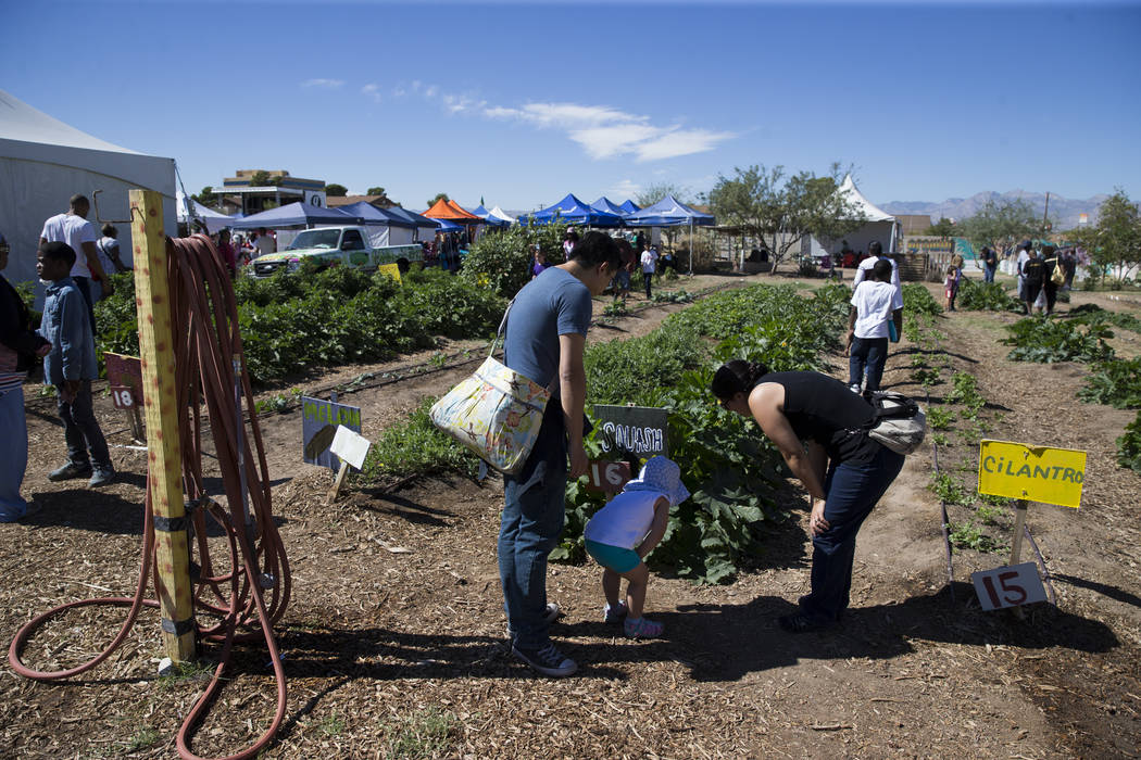 People walk the community garden during the Grow Your Own Festival at the Vegas Roots Community Garden in Las Vegas, Saturday, Oct. 7, 2017. Erik Verduzco Las Vegas Review-Journal @Erik_Verduzco
