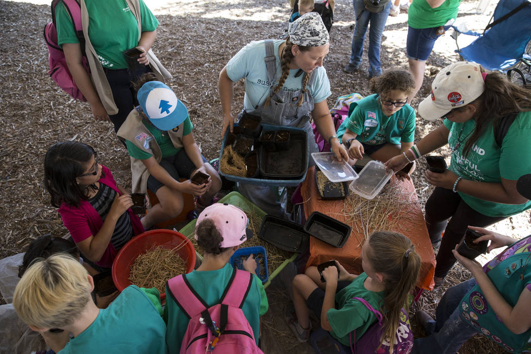Rhonda Killough, top center, works with children to plant seeds in pots during the Grow Your Own Festival at the Vegas Roots Community Garden in Las Vegas, Saturday, Oct. 7, 2017. Erik Verduzco La ...