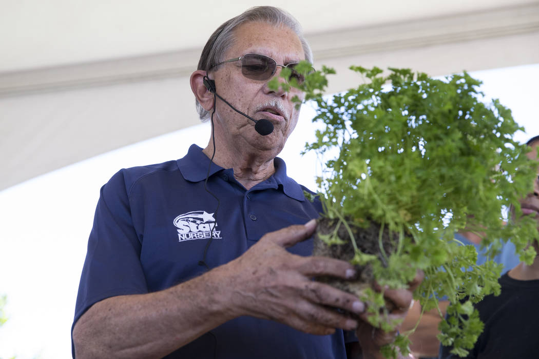 Paul Noe, employee Star Nursery, gives people gardening tips during the Grow Your Own Festival at the Vegas Roots Community Garden in Las Vegas, Saturday, Oct. 7, 2017. Erik Verduzco Las Vegas Rev ...