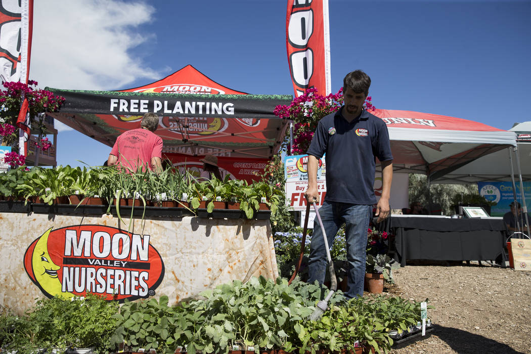 Tereso Enriquez, employee with the Moon Valley Nurseries,  during the Grow Your Own Festival at the Vegas Roots Community Garden in Las Vegas, Saturday, Oct. 7, 2017. Erik Verduzco Las Vegas Revie ...