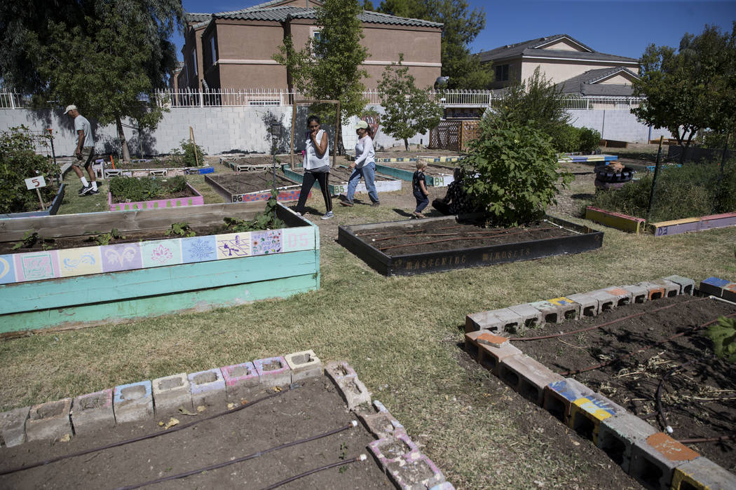 People walk the garden during the Grow Your Own Festival at the Vegas Roots Community Garden in Las Vegas, Saturday, Oct. 7, 2017. Erik Verduzco Las Vegas Review-Journal @Erik_Verduzco