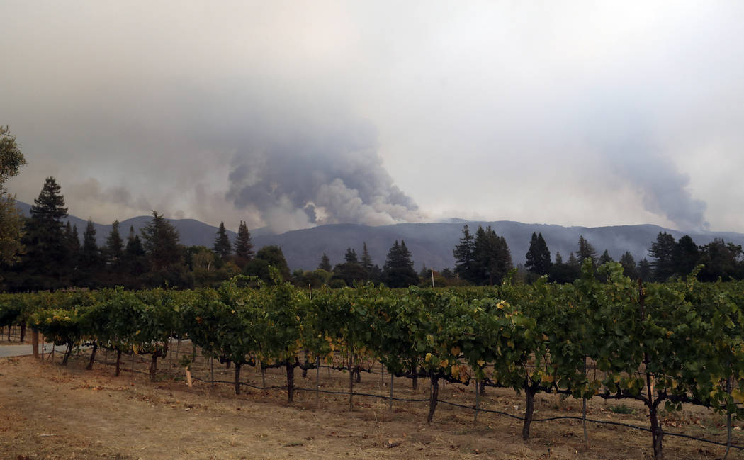 Vineyards are lined up as a wildfire burns on a mountaintop Monday, Oct. 9, 2017, in Napa, Calif. (AP Photo/Marcio Jose Sanchez)