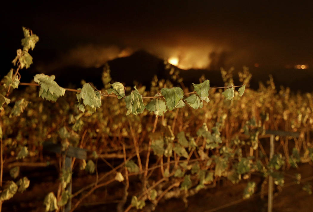 A wildfire from a distant mountain burns over a vineyard in Kenwood, Calif., Tuesday, Oct. 10, 2017. Some of the largest blazes in Northern California were in Napa and Sonoma counties, home to doz ...