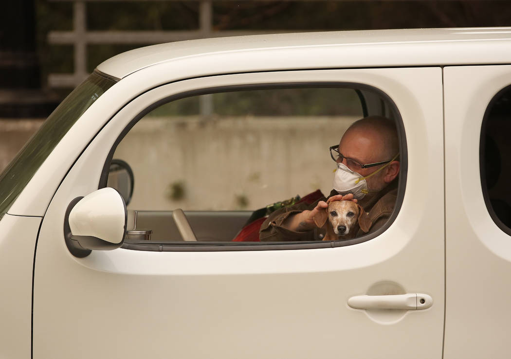 Chris Shiery pets his dog, Ruby, while waiting to evacuate the town of Sonoma, Calif., Wednesday, Oct. 11, 2017. With fires getting near, the town was placed under a voluntary evacuation order. (A ...