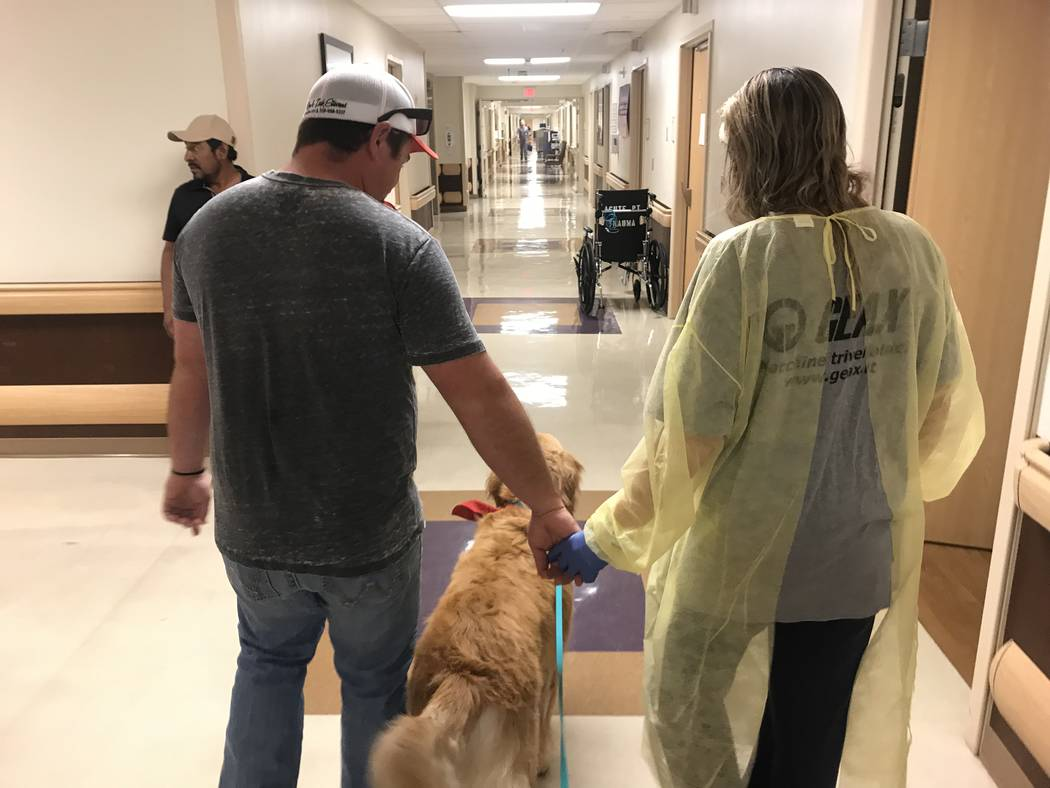 Rachel Sheppard and her husband walk down the halls in Sunrise Hospital with therapy dog, Carson, for company. (Jodi Notch)