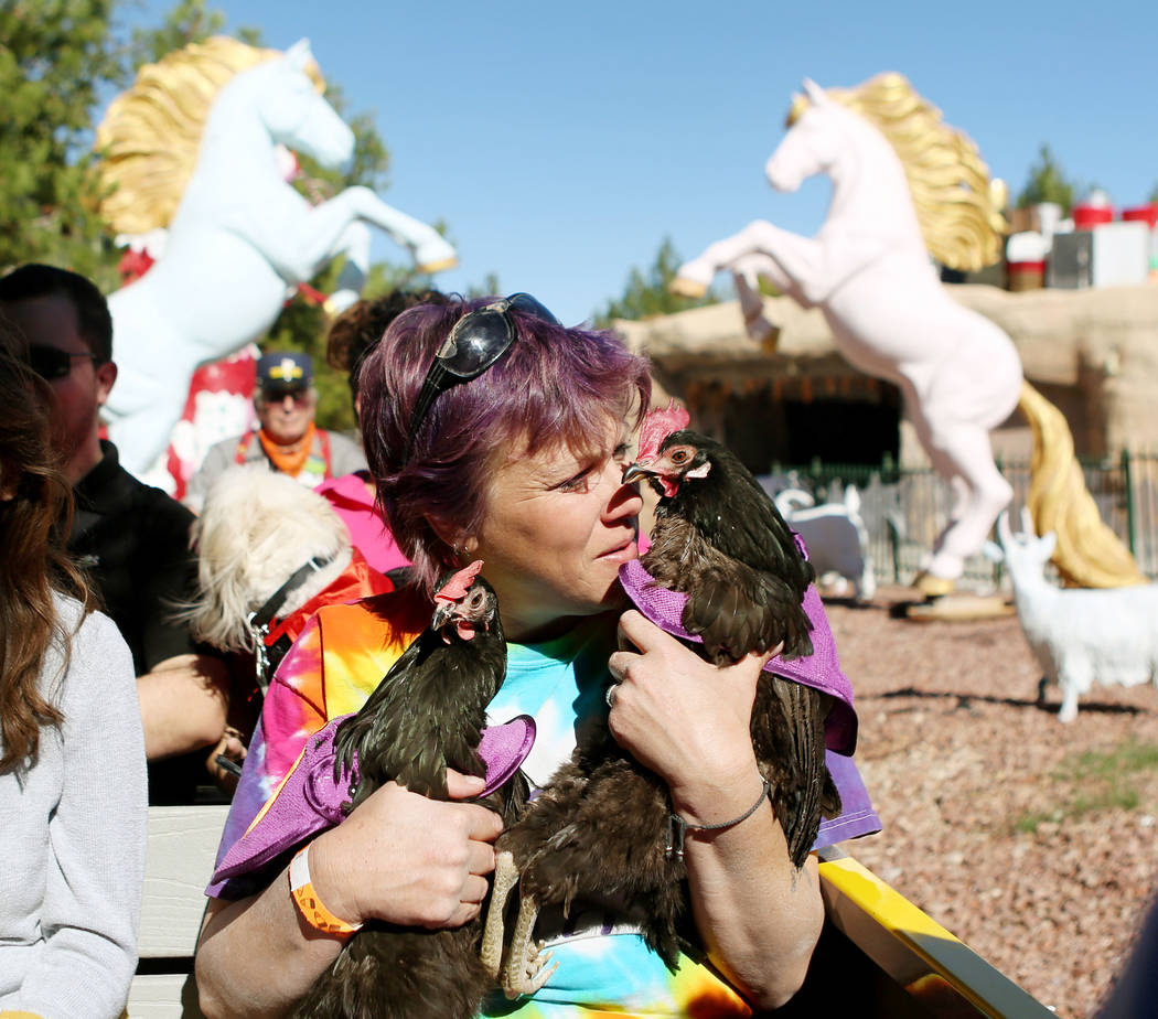 Wendy Cooke rides a train with her pet chickens during Opportunity Village's Pumpkin Paws at HallOVeen at the Magical Forest in Las Vegas, Sunday, Oct. 22, 2017. Elizabeth Brumley Las Vegas Review ...
