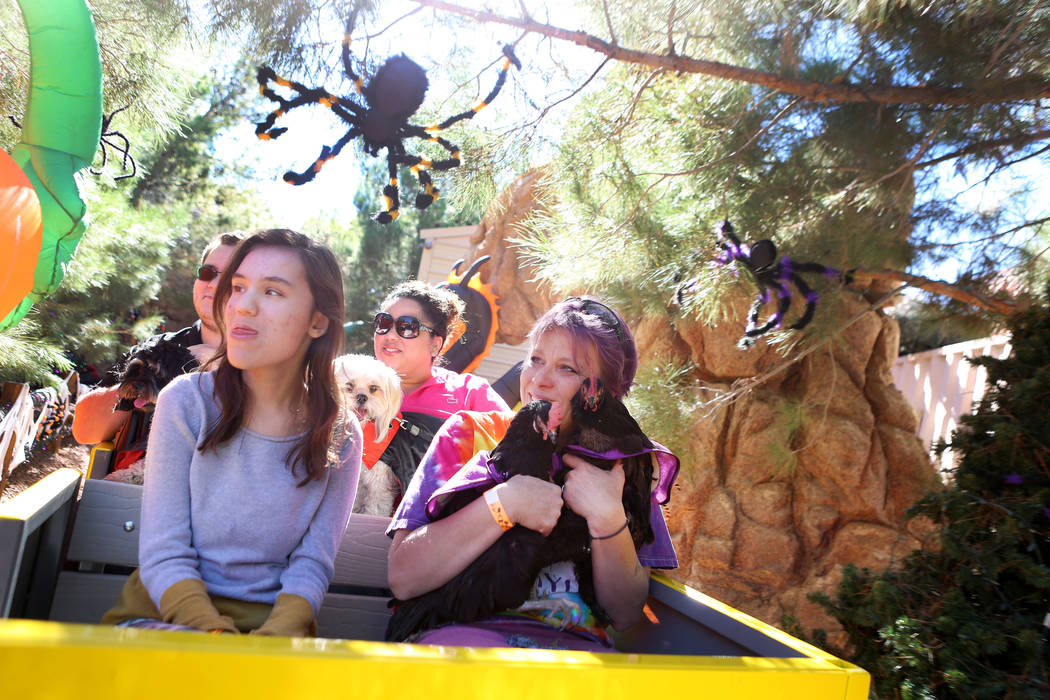 Rebecca Williams, 16, from left, Jasmine Ashworth, background, and Wendy Cooke ride a train with pets during Opportunity Village's Pumpkin Paws at HallOVeen at the Magical Forest in Las Vegas, Sun ...