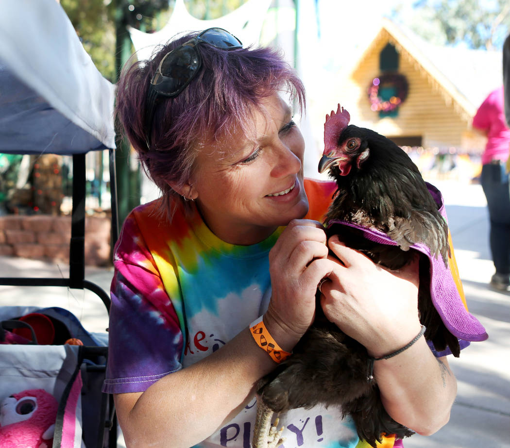 Wendy Cooke holds her pet chicken Pickle during Opportunity Village's Pumpkin Paws at HallOVeen at the Magical Forest in Las Vegas, Sunday, Oct. 22, 2017. Elizabeth Brumley Las Vegas Review-Journa ...