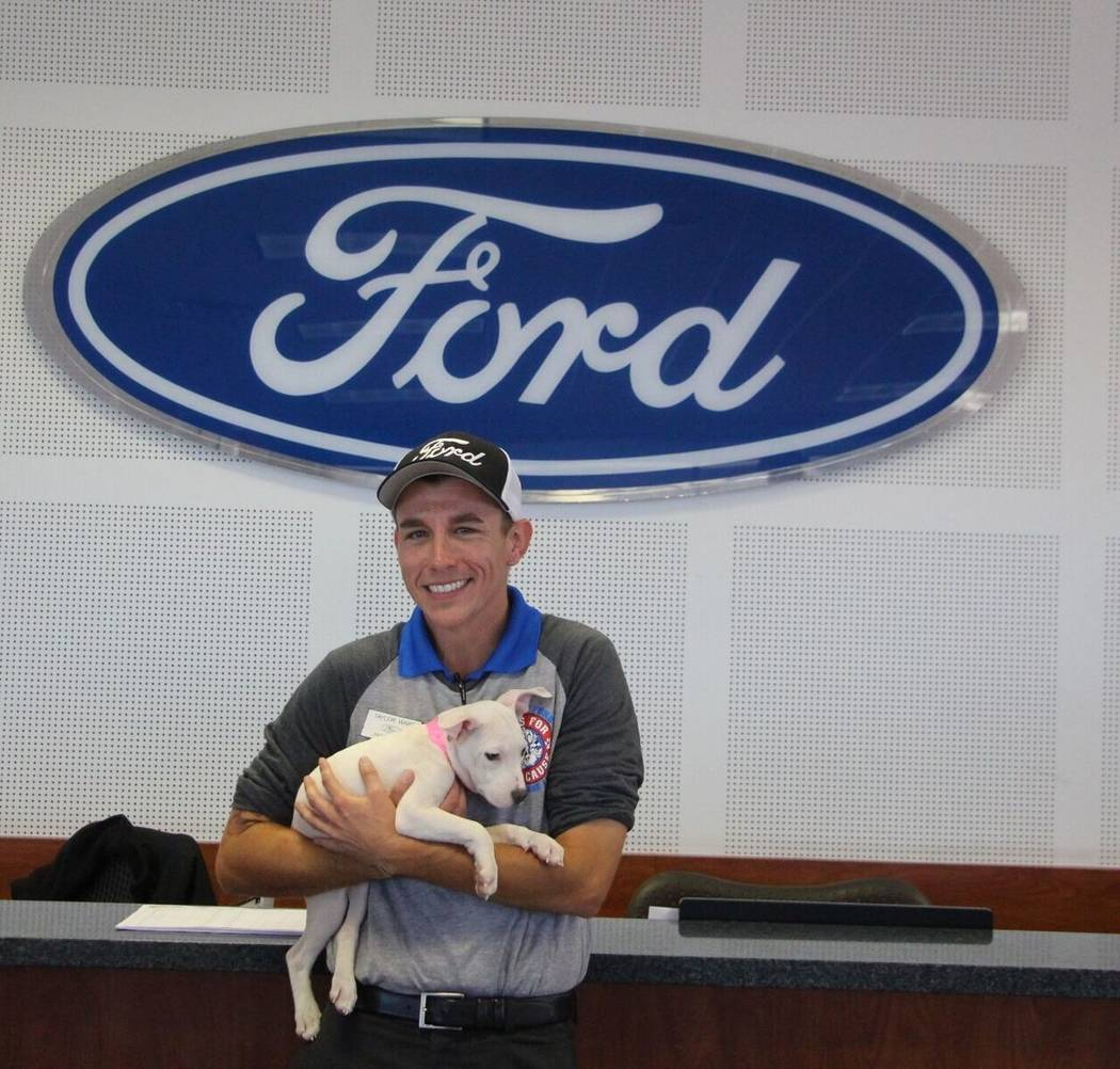 Friendly Ford Friendly Ford new car manager Taylor Warf was the first person to adopt a dog from the Animal Foundation Oct. 21 at the dealership. Warf named his new puppy Lucy.