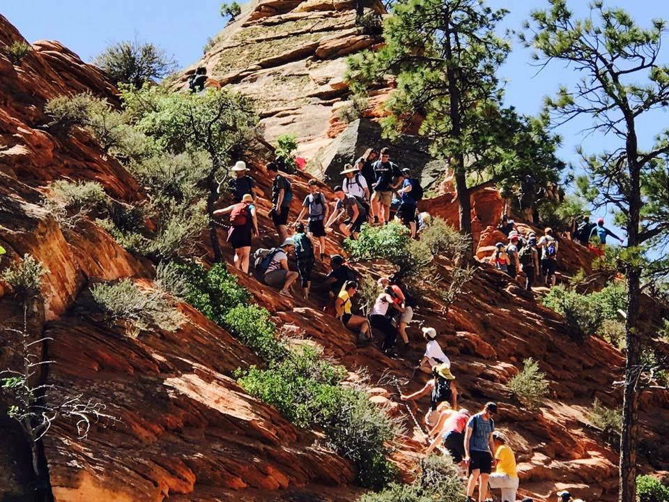 A line of hikers climbs up to the Angel's Landing at Zion National Park on May 28. The park in Utah is one of 17 National Park Service sites being considered for substantial peak-season fee increa ...