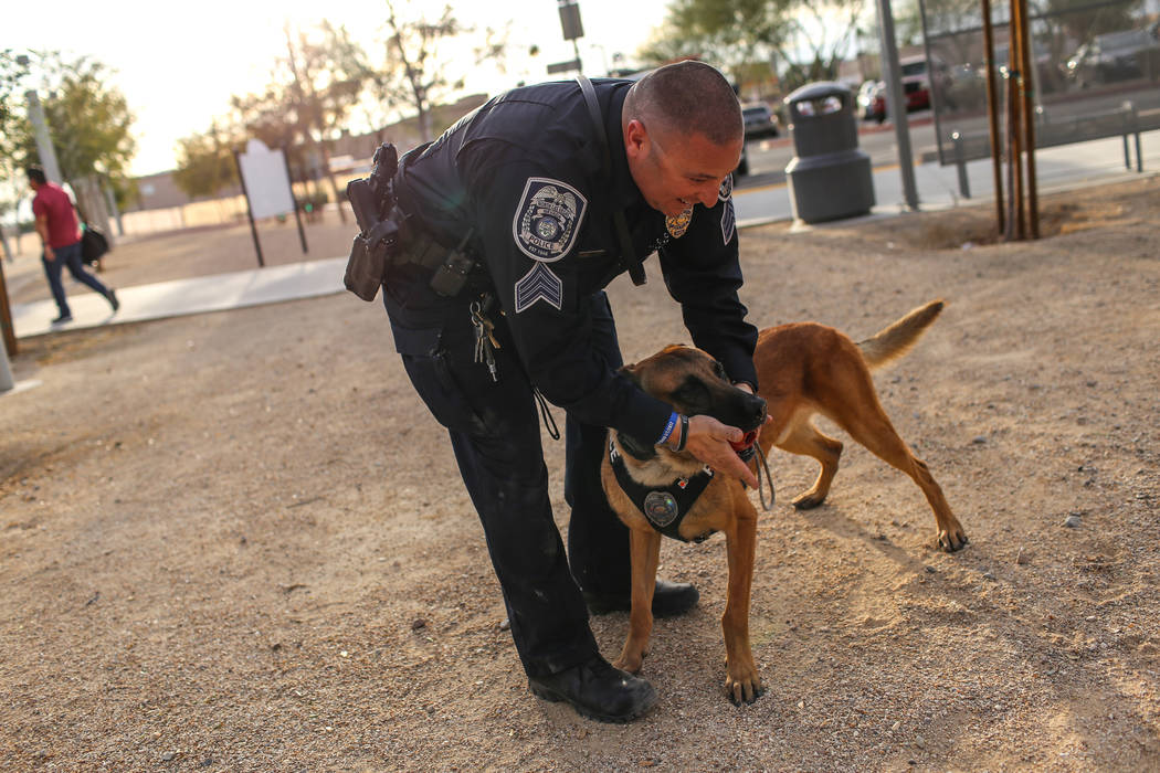 North Las Vegas Police Sgt. Scott Salkoff plays with K-9 officer Storm outside city hall in North Las Vegas, Monday, Oct. 30, 2017. Joel Angel Juarez Las Vegas Review-Journal @jajuarezphoto