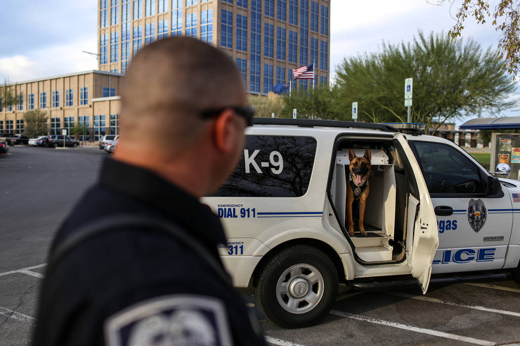 North Las Vegas Police Sgt. Scott Salkoff watches as K-9 officer Storm stands inside his patrol car outside city hall in North Las Vegas, Monday, Oct. 30, 2017. Joel Angel Juarez Las Vegas Review- ...