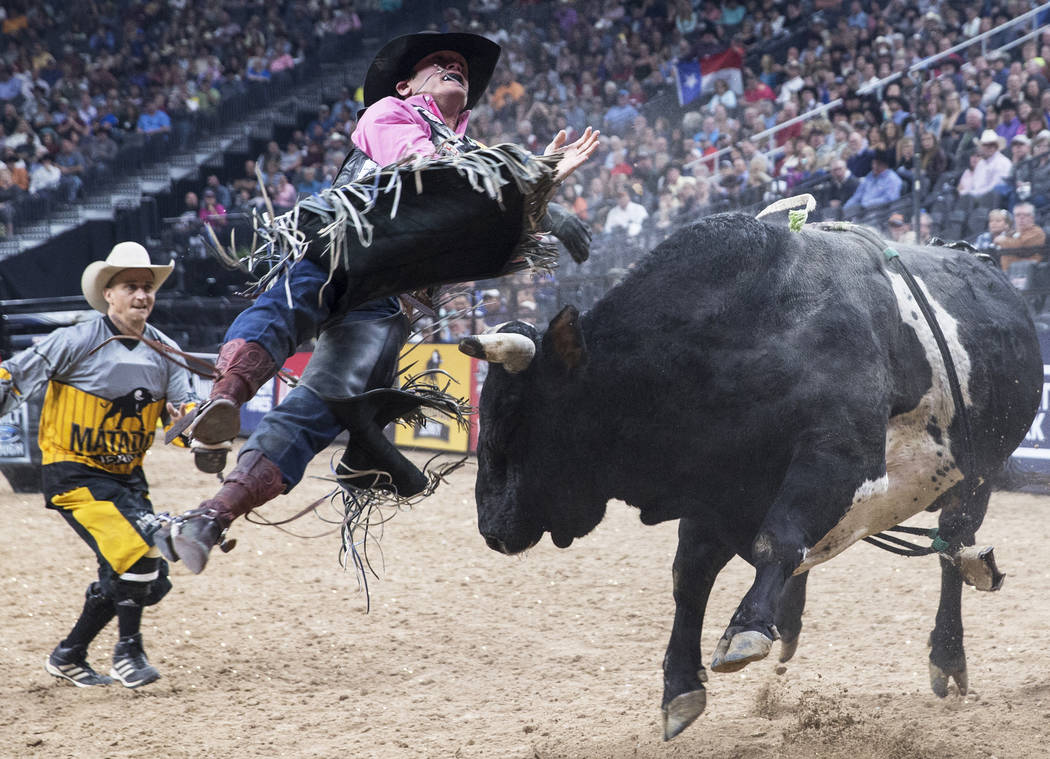 Taylor Toves gets bucked off Honey Hush during the Professional Bull Riders World Finals on Sunday, Nov. 5, 2017, at T-Mobile Arena, in Las Vegas. Benjamin Hager Las Vegas Review-Journal @benjamin ...