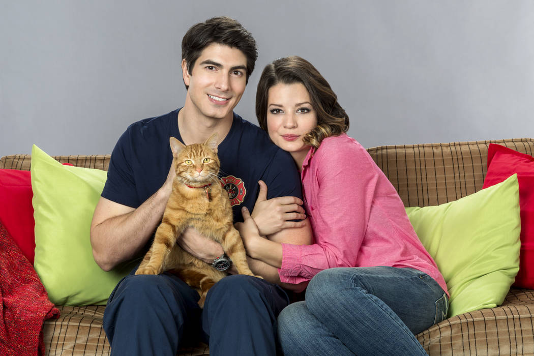 THE NINE LIVES OF CHRISTMAS-With Christmas approaching, a handsome fireman afraid of commitment adopts a stray cat and meets a beautiful veterinary student who challenges his decision to remain a  ...