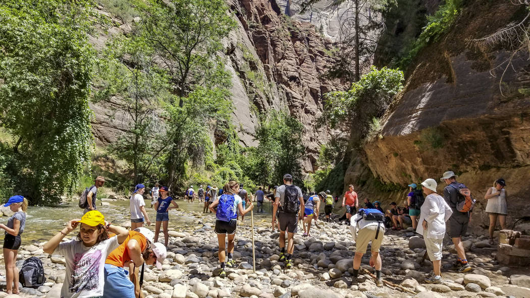 Zion National Park visitors congregate near the Virgin River to hike The Narrows at Zion National Park in Utah on Friday, July 14, 2017. (Patrick Connolly/Las Vegas Review-Journal) @PConnPie