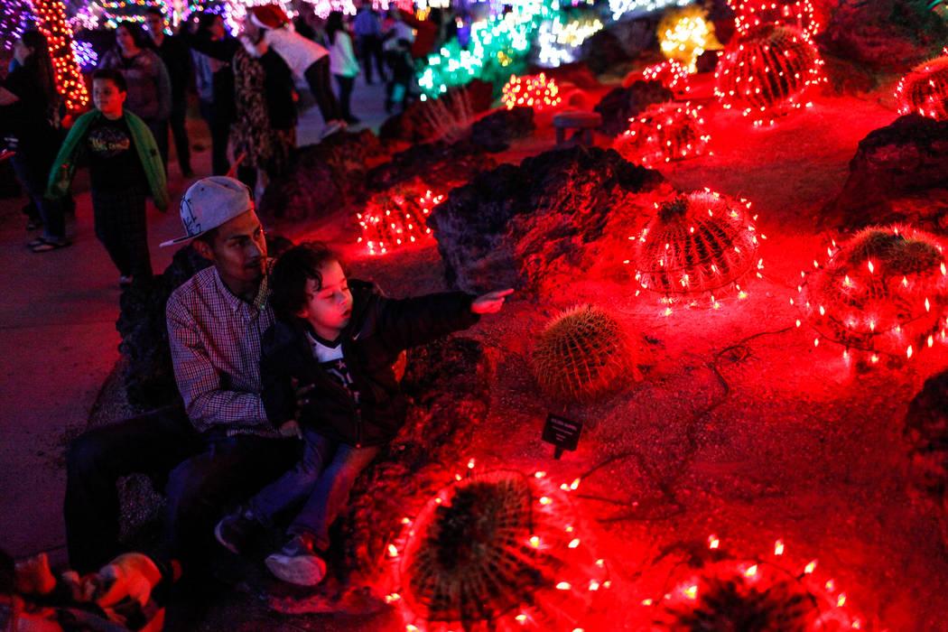 David Valverde of Las Vegas, 28, left, holds his son Xzayden, 3, right, as they explore the 24th Annual Holiday Cactus Garden in Henderson, Tuesday, Nov. 7, 2017. Joel Angel Juarez Las Vegas Revie ...