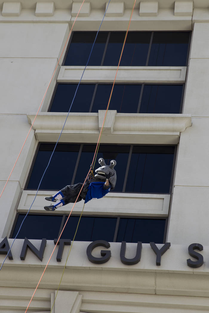 Cosmo from the Las Vegas 51s rappels from the Caesars Palace Augustus Tower in Las Vegas, Friday, Nov. 3, 2017. Olive Crest is hosting the Drop to Stop Child Abuse event to bring awareness to chil ...