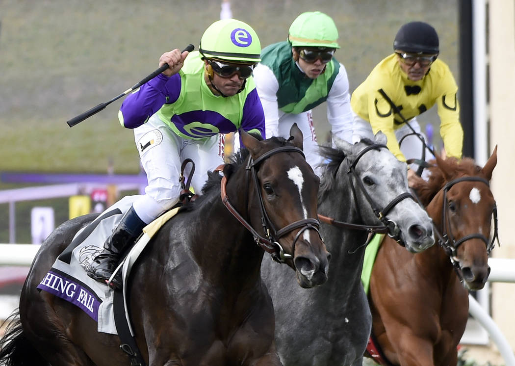Javier Castellano, left, celebrates after riding Rushing Fall to victory in the Juvenile Fillies Turf horse race during the first day of the Breeders' Cup, Friday, Nov. 3, 2017, in Del Mar, Calif. ...