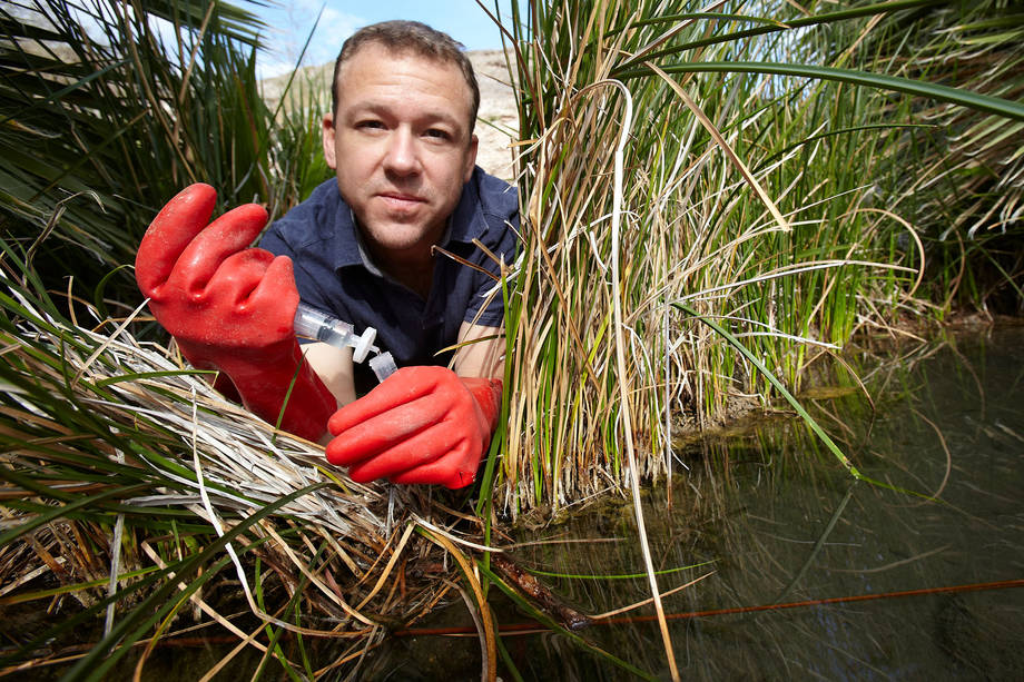 Brian Hedlund, an associate professor at UNLV, has been studying microbes at the Great Boiling Spring since 2004. (R. Marsh StarksUNLV Magazine)