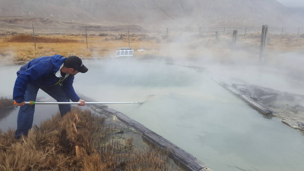 UNLV graduate student Scott Thomas collects samples from Great Boiling Spring, about 100 miles northeast of Reno. (UNLV)