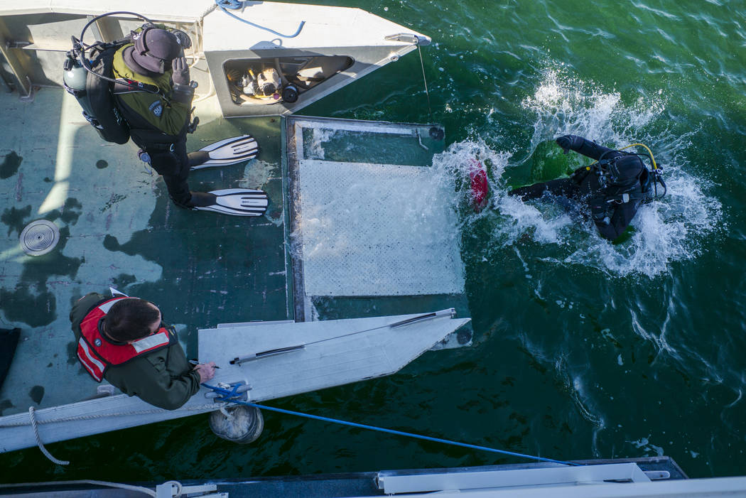 A member of WAVES, or Wounded American Veterans Experience Scuba, a nonprofit group that promotes scuba diving for disabled veterans, dives into the water for a submerged resource monitoring demon ...