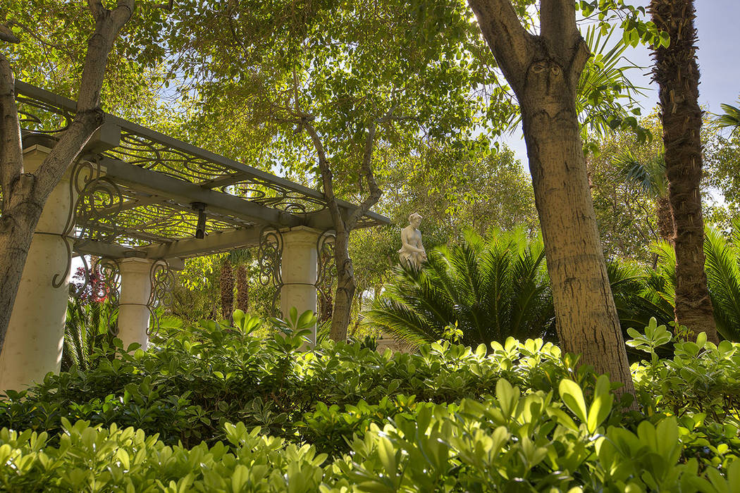 The garden.  (Synergy|Sotheby's International Realty)