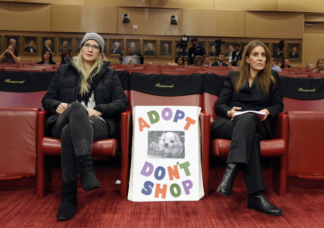 Tracy Newmarch, left, and Denis Truscello, who oppose the repeal of a ban that would keep pet stores from selling non-rescue animals, attend the City Council meeting at Las Vegas City Hall Wednesd ...