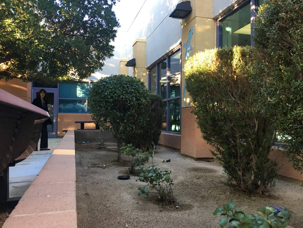 This planter in a central courtyard houses the school's turtle - which happens to be in hibernation this time of year. Principal Amy Yacobovsky says the school will likely add more wildlife to the ...