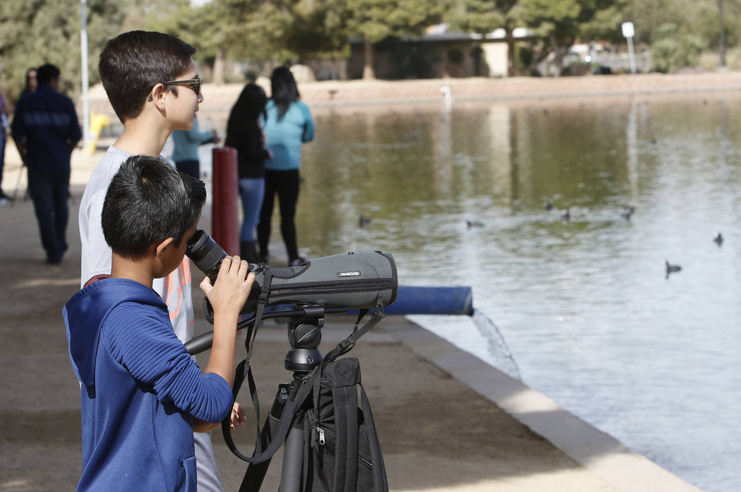 Yash Kadam, 8, looks through spotting scope as his brother Ojas looks away during International Migratory Bird Day on Tuesday, Nov. 21, 2017 at Sunset Park Lake in Las Vegas. Bizuayehu Tesfaye Las ...