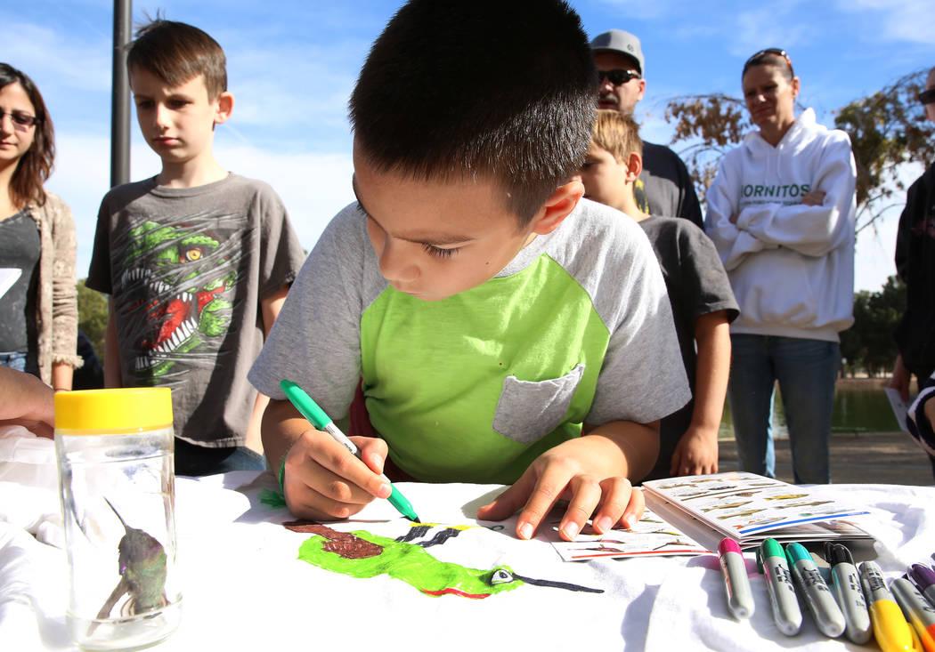 Marlowe Mandado, 9, draws Ruby-Crowned Kinglet on his T-shrit during International Migratory Bird Day on Tuesday, Nov. 21, 2017 at Sunset Park Lake in Las Vegas. Bizuayehu Tesfaye Las Vegas Review ...