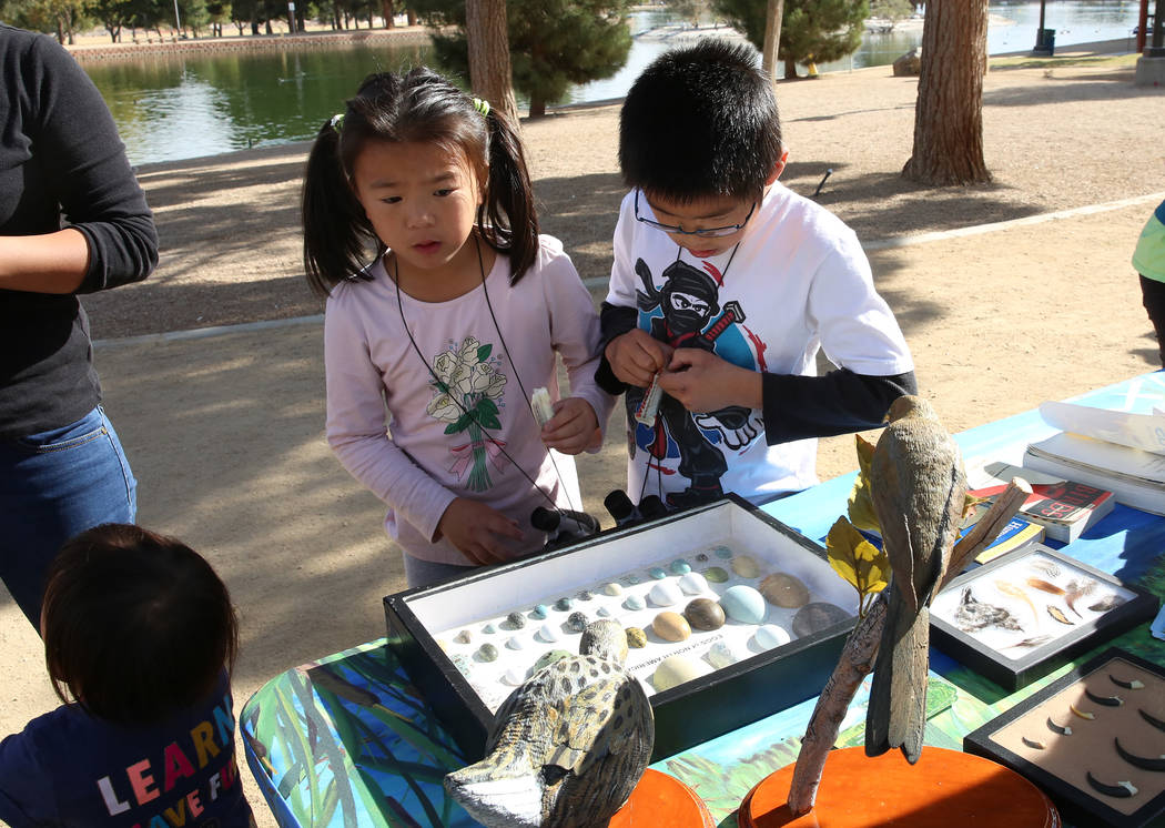 Ally Chen, 7, left, and Edison Zhang, 9, watch the eggs of birds common to North America during International Migratory Bird Day on Tuesday, Nov. 21, 2017 at Sunset Park Lake in Las Vegas. Bizuaye ...