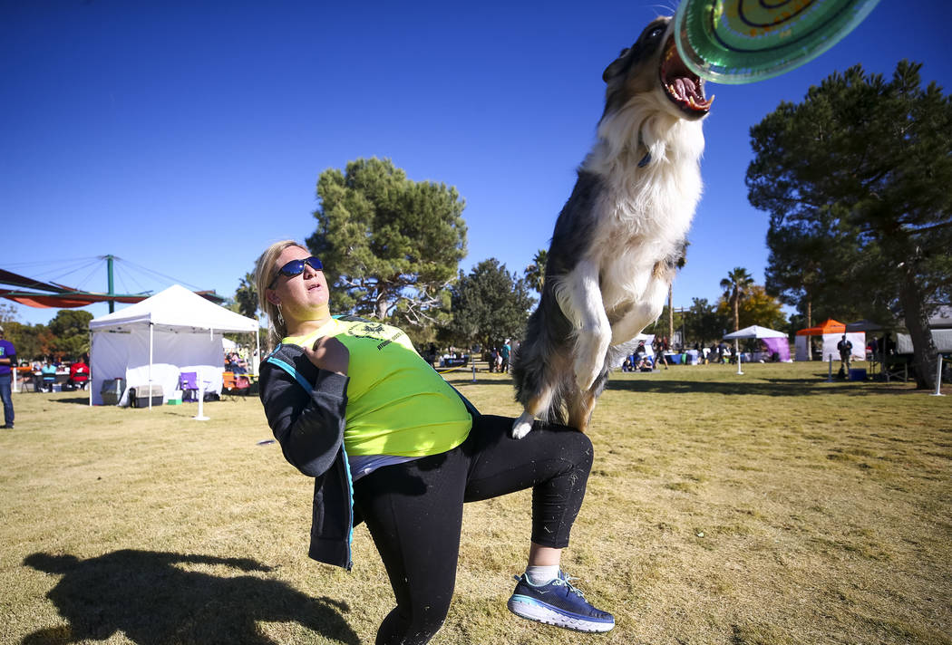 Sierra Pahnke and seven-year-old Ultra, a border collie mix, perform a frisbee routine during the Animal Foundationճ 5th Annual Fast and Furriest 5K event at Sunset Park in Las Vegas, Saturd ...