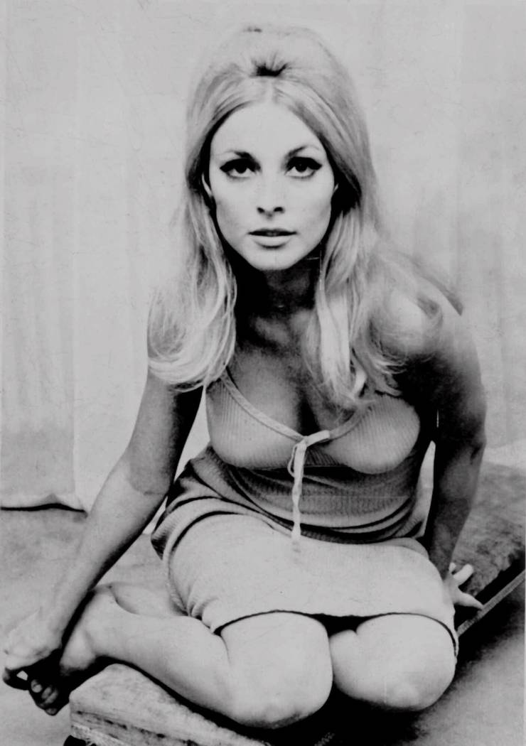 Actress Sharon Tate is shown in this undated photo. Tate, who starred in television and film roles, was identified by police as one of five victims found slain in her Benedict Canyon estate Aug. 9 ...