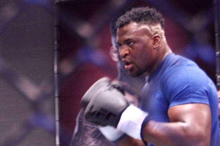 Francis Ngannou is a rising star in the UFC's heavyweight division. Though Derrick Lewis has expressed interest in fighting him next, Ngannou's looking to fight someone who isn't as 'slow' as he i ...