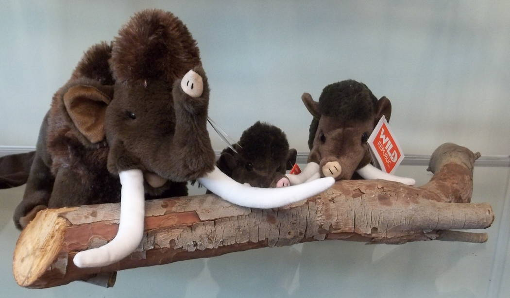 Plush wooly mammoths pose at the Nevada State Museum, Las Vegas, gift shop