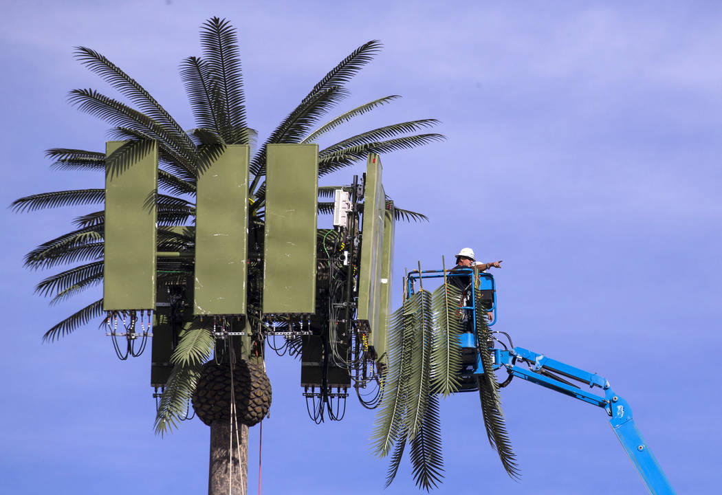 Telecommunication workers in a telehandler service a network antenna disguised as a palm tree in Henderson, Tuesday, Nov. 21, 2017. Richard Brian Las Vegas Review-Journal @vegasphotograph
