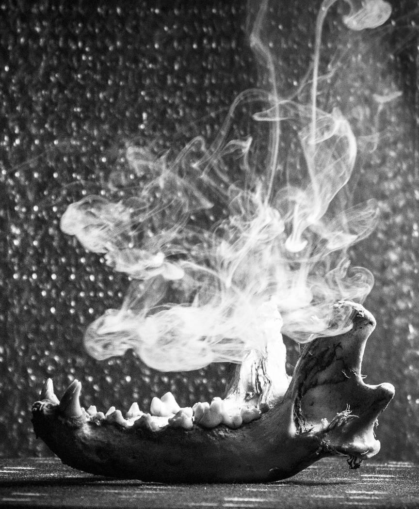 """""""Smokeyjaws"""" by artist/photographer Jesse Hudson"""