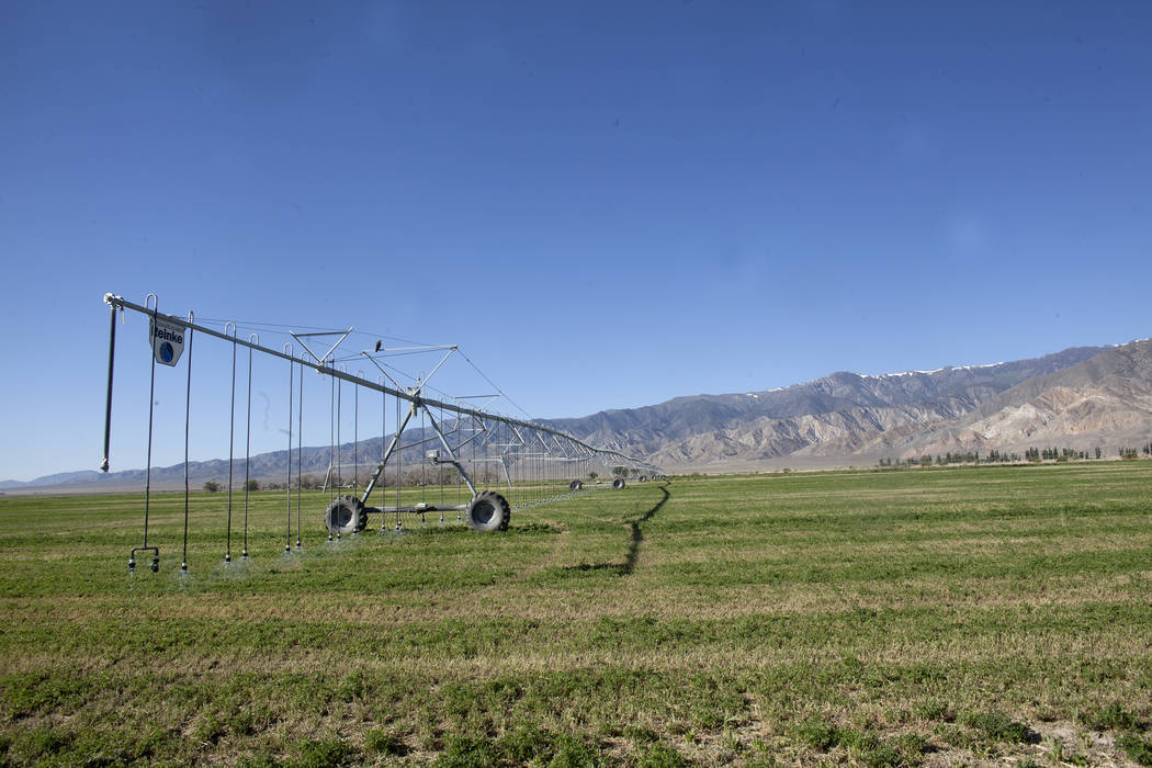 Alfalfa fields on Tuesday, June 6, 2017, in Dyer in Esmeralda county. The county is one of the least populous in the nation. Rachel Aston Las Vegas Review-Journal @rookie__rae