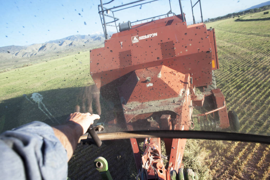 Esmeralda County Commissioner Ralph Keyes bails hay on Wednesday, June 7, 2017, in the Fish Lake Valley in Esmeralda county. The county is one of the least populous in the nation. Rachel Aston Las ...