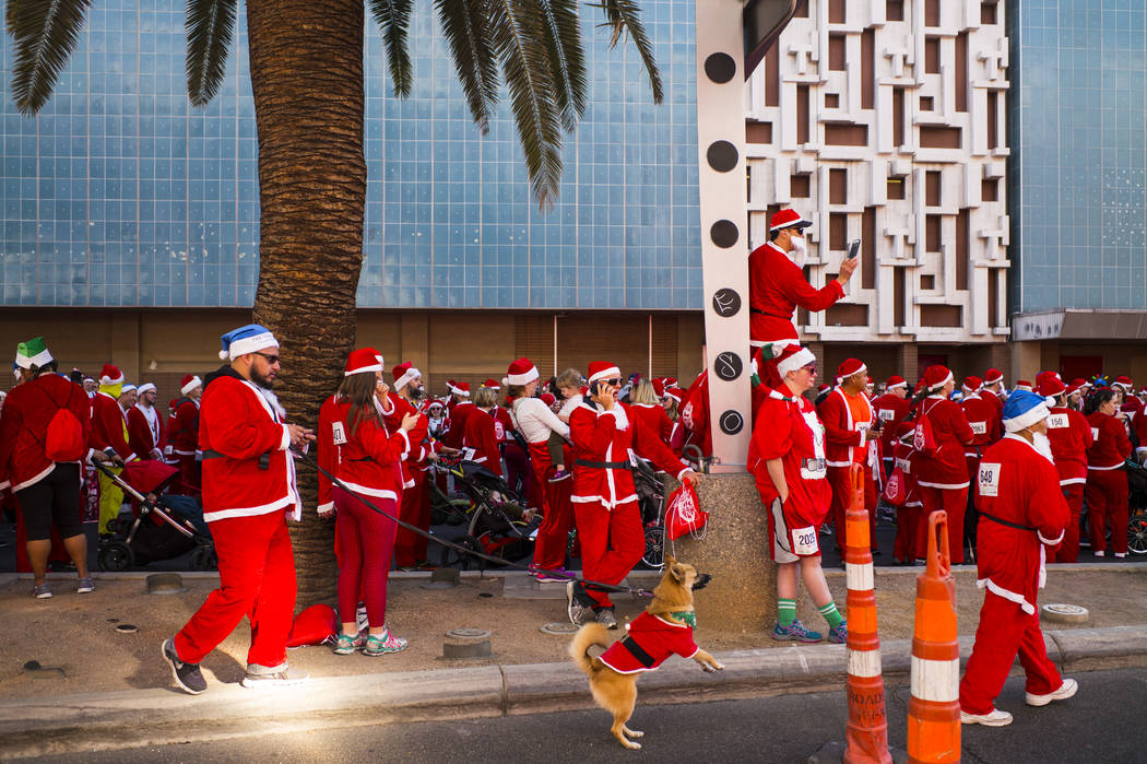 Race participants line up for the Las Vegas Great Santa Run in downtown Las Vegas on Saturday, Dec. 2, 2017. Chase Stevens Las Vegas Review-Journal @csstevensphoto