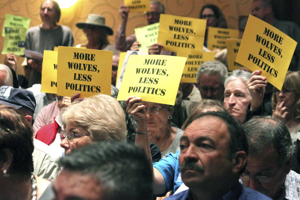 Many in the crowd hold signs in support of the Mexican gray wolf during a meeting of the New Mexico Game Commission in Albuquerque, N.M., in 2015. (AP Photo/Susan Montoya Bryan, File)