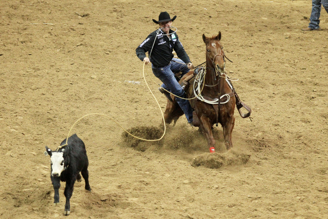 Trevor Brazile Leads All Around Standings As Nfr Heads To