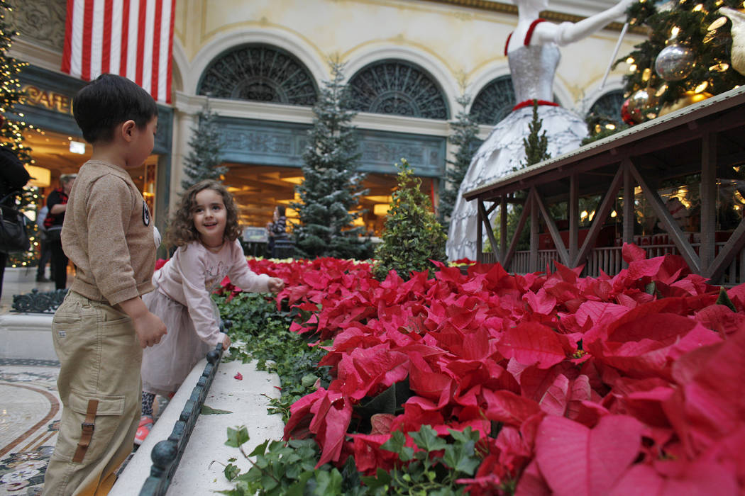 Alden Sutheno, 3, and Tala Taherzadeh, 3, wait for the toy train at the Bellagio Conservatory & Botanical Gardens in Las Vegas, Monday, Dec. 4, 2017. Rachel Aston Las Vegas Review-Journal @roo ...