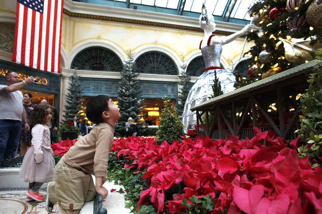 Alden Sutheno, 3, looks up at a Christmas tree at the Bellagio Conservatory & Botanical Gardens  in Las Vegas, Monday, Dec. 4, 2017. Rachel Aston Las Vegas Review-Journal @rookie__rae