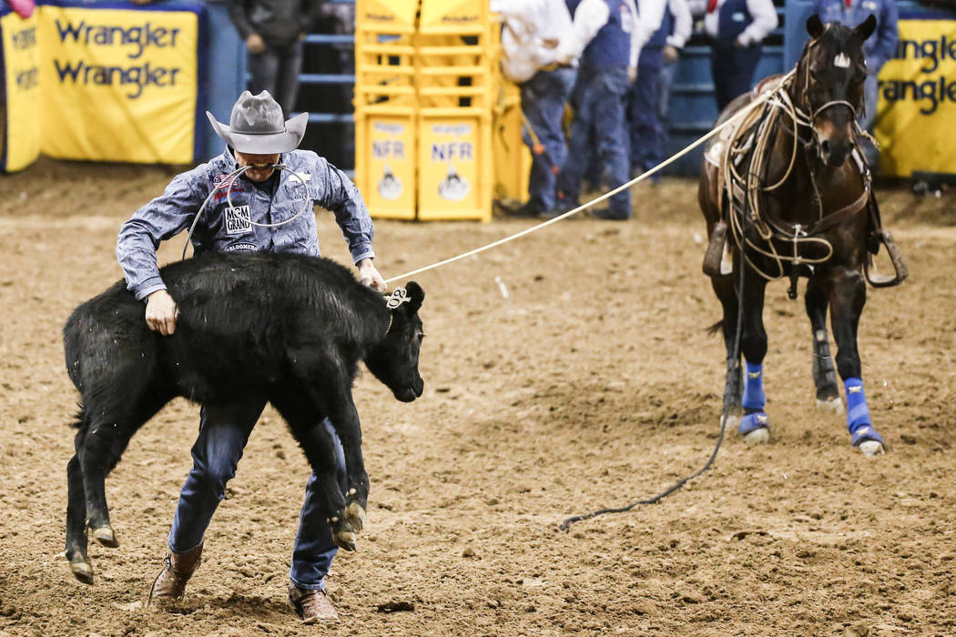 Tuf Cooper of Weatherford, Texas throws down a steer in the in the tie-down roping event during the fourth night of the 59th Wrangler National Finals Rodeo at the Thomas & Mack Center in Las V ...
