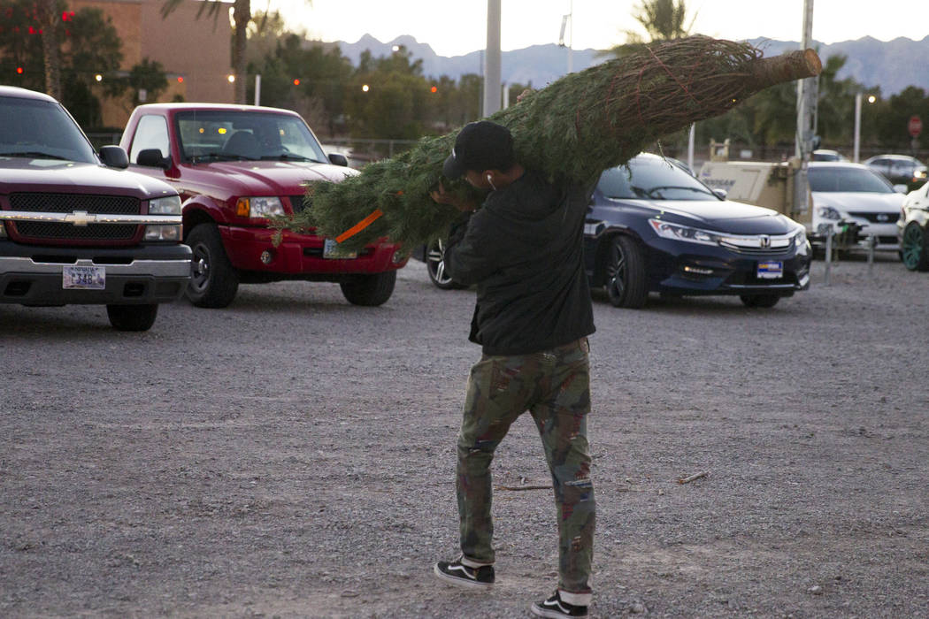 An employee carries a Christmas tree for a customer at Rudolph's Christmas Trees near the intersection of Alta Drive and Rampart Boulevard in Las Vegas, Wednesday, Dec. 6, 2017. Erik Verduzco Las  ...