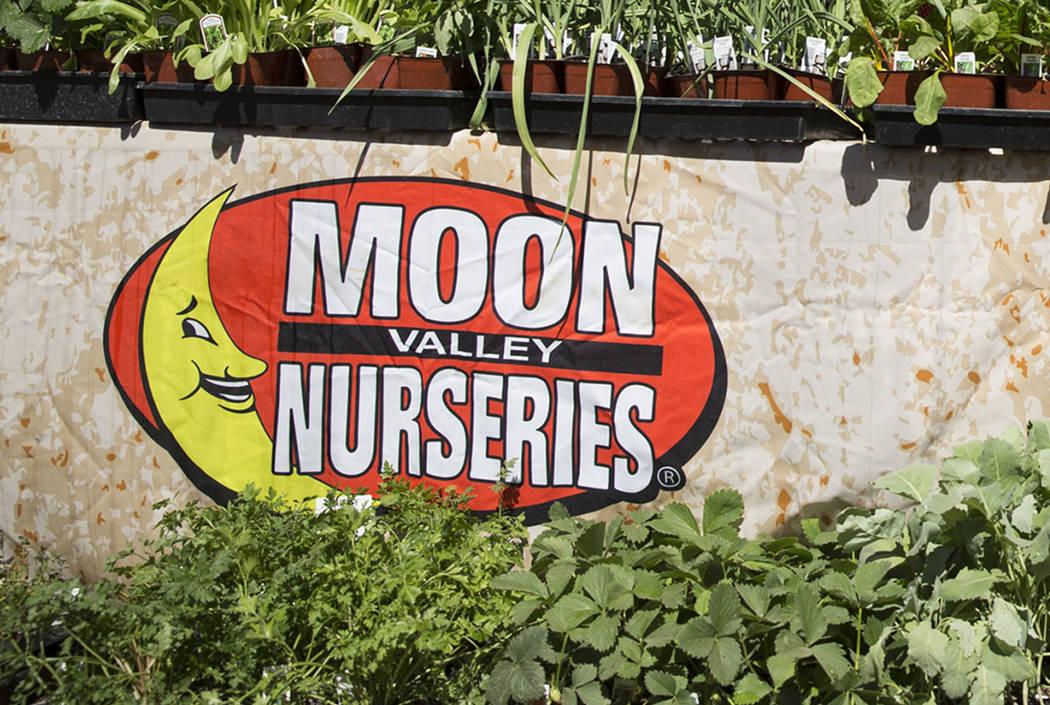 Moon Valley Nurseries In Las Vegas Review Journal