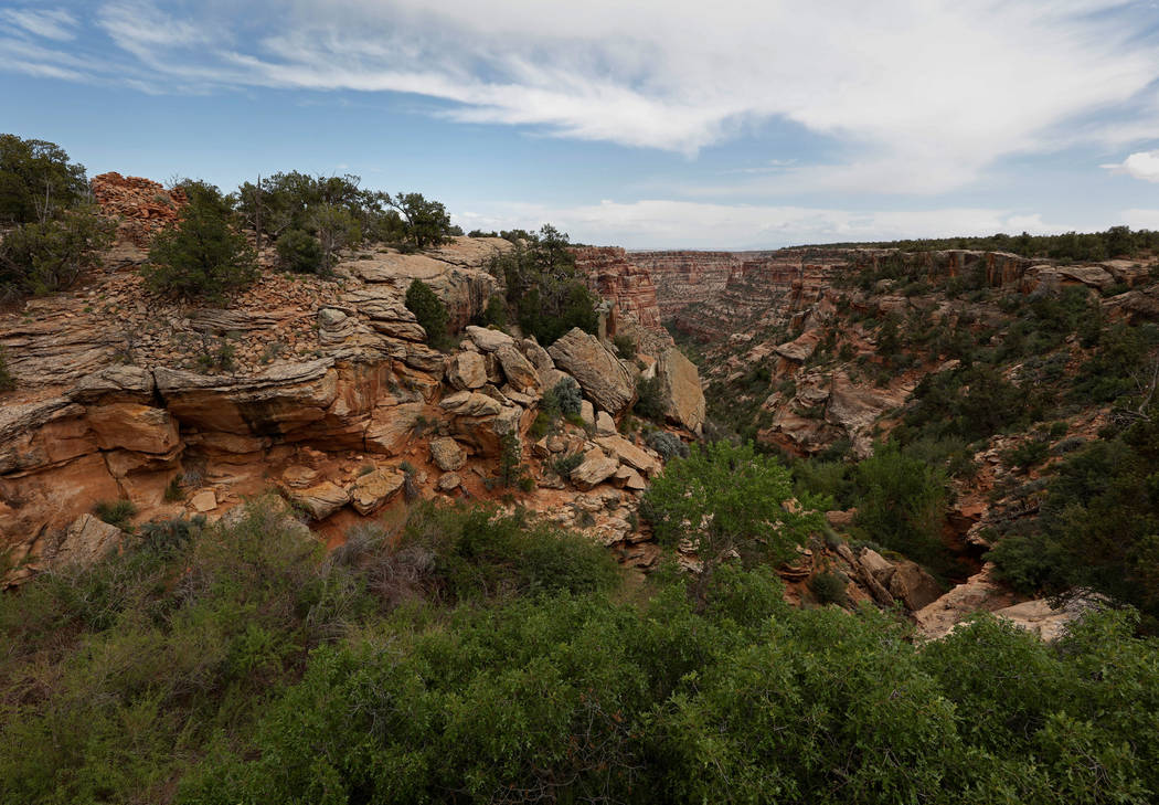 A rocky canyon containing an Ancestral Puebloan archaeological site know as Cave Towers is seen in Bears Ears National Monument in the Four Corners region, Utah, U.S. May 16, 2017. REUTERS/Bob Strong